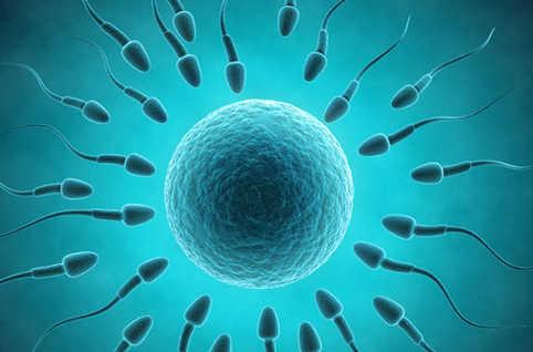 Comment Augmenter le Volume de son Sperme